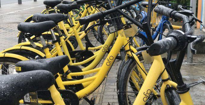 Compartir la bicicleta con esteroides