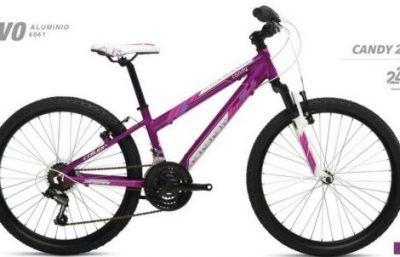 Bicicletas niñas 24 pulgadas