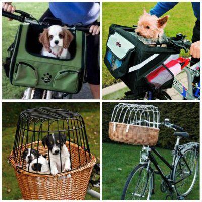 Cestas para perros en bicicletas