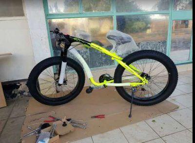 Fat bike 29