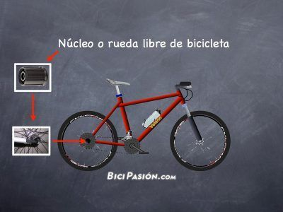 Nucleos bicicletas