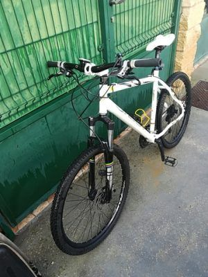 Orbea cross country