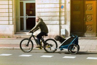 Remolques de bicis para perros